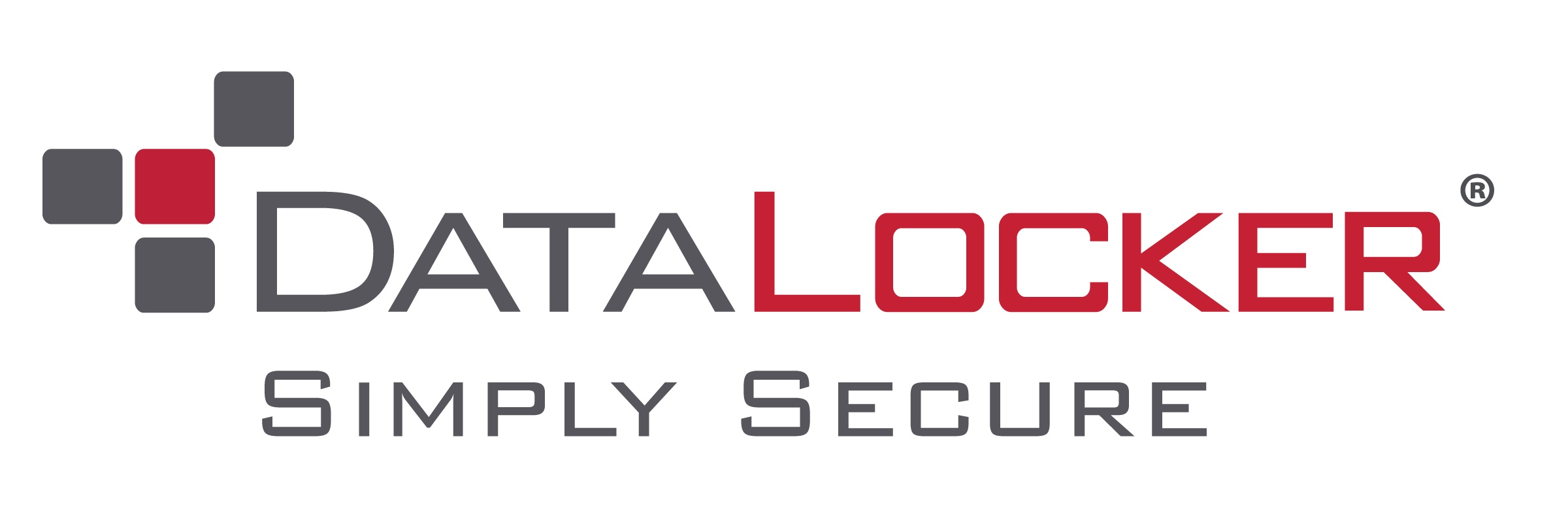 DATALOCKER LICENSE IRONKEY EMS CLOUD 1YR